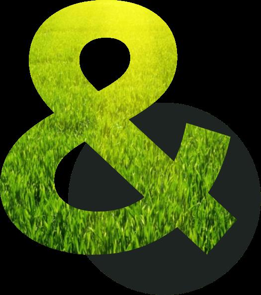 "Green & Black ""&"" symbol"