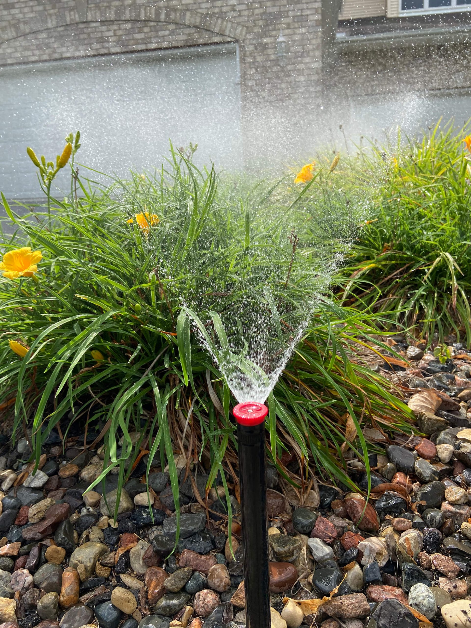 irrigation system watering flowers
