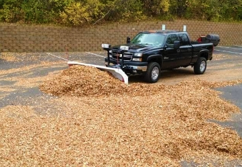 leaf removal services
