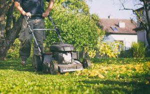 guy mowing grass with push mower