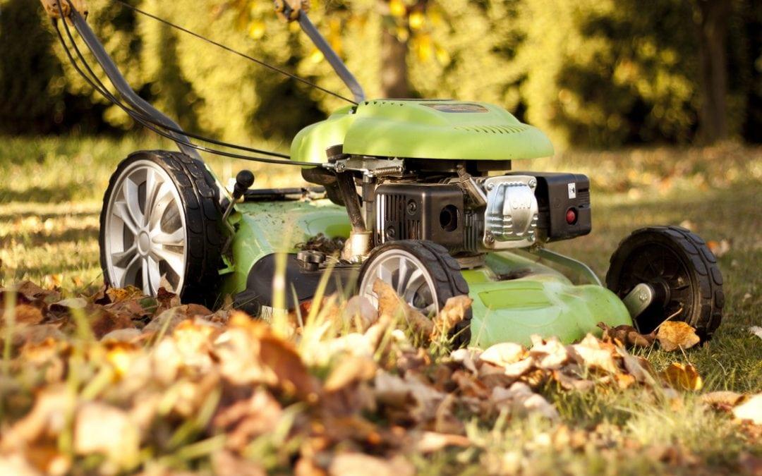 push mower in leaves
