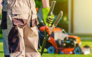 landscaper with snips